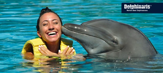 Read all about my THRILLING dolphin swim in the Riviera Maya