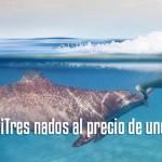 Aventura Triple programa nado delfines en Riviera Maya México