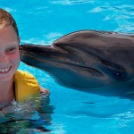 Nado con delfines en Barcelo Maya Beach en Riviera Maya.