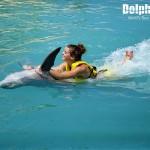 Emocionante Belly Ride nadando con delfines en Dolphinaris.