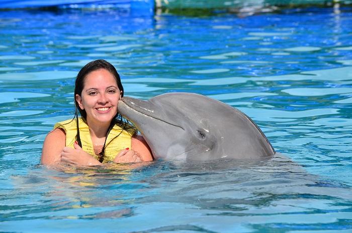 Dolphin kiss in Riviera Maya