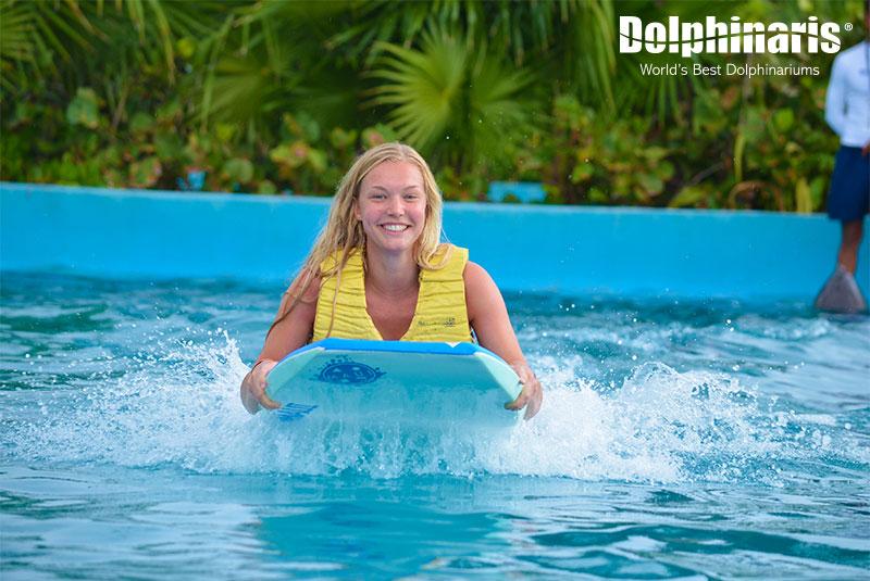 Boogie Push en Riviera Maya nadando con delfines.
