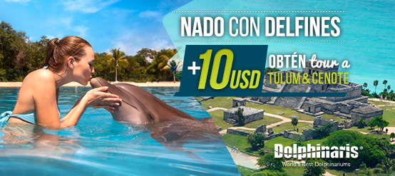 2 Days Tour: A Dolphin Swim Program plus an amazing tour to Tulum & Cenote