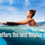 Compare your dolphin swim program.