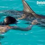 Conoce más acerca de los delfines con la máscara de vista subacuática.