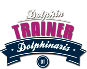 Dolphin Trainer Program Cozumel - The best dolphin experience