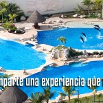 Dolphinaris Cancún nadar con delfines.