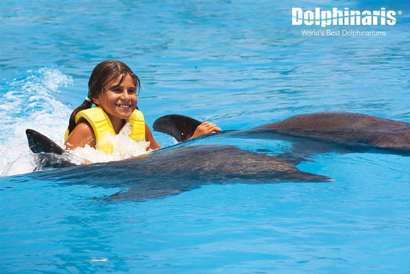 Paseo Dorsal Ride nadando con delfines.