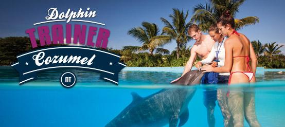 Entrenador de delfines en Cozumel con todo incluido.
