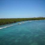 Jungle Tour Aquaworld Laguna Nichupte mas programa nado con delfines