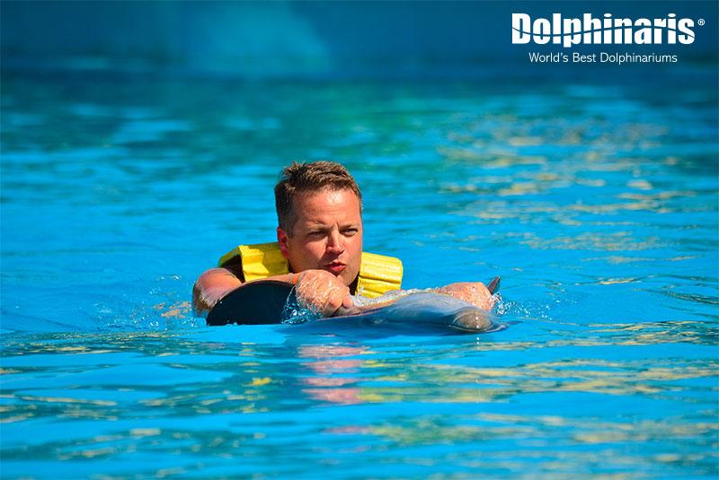 La mejor experiencia con delfines en Dolphinaris, actividad Belly Ride.