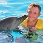 Cherish your magical moments with the dolphins!