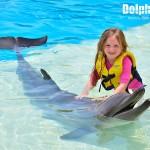 ¡Chicos y grandes se divierten en un encuentro con delfines!