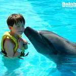 Momentos mágicos suceden en el Programa Interactivo con Delfines.