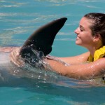 Nado com golfinhos preco especial programa Swim Speed Ride Riviera Maya - Belly Ride.
