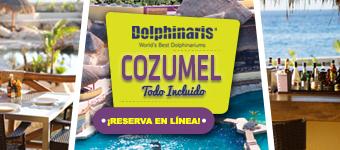 Nadar con delfines en Cozumel México con alimentos y bebidas ilimitadas.