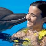 Nadar con delfines - Dolphin Swim Program - actividad beso de delfin.