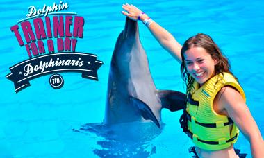 Nado con delfines en Dolphinaris Riviera Maya.
