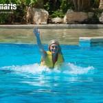 Foot Push nadando con delfines.