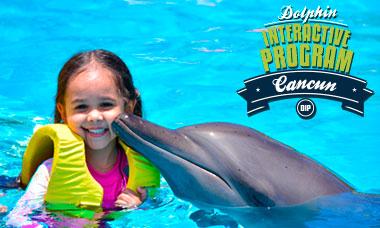 Nadar con delfines en Semana Santa Cancún - Programa Interactivo.