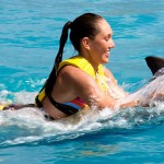 Nado con delfinesprograma Swim Speed Ride Riviera Maya - Belly Ride