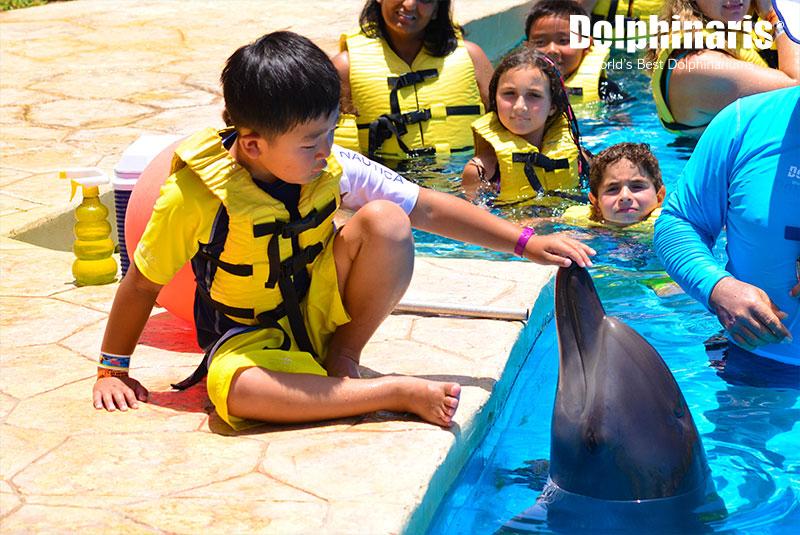 Niños aprendiendo acerca de los delfines en Dolphinaris.