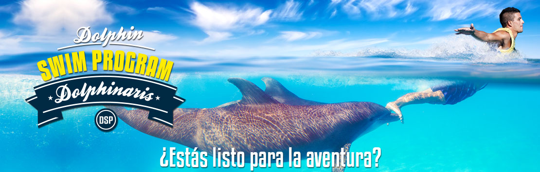 Programa de nado con delfines - Dolphin Swim Program.