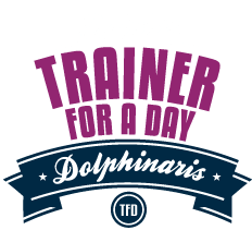 Programa entrenador delfines por un día, la mejor experiencia con delfines.