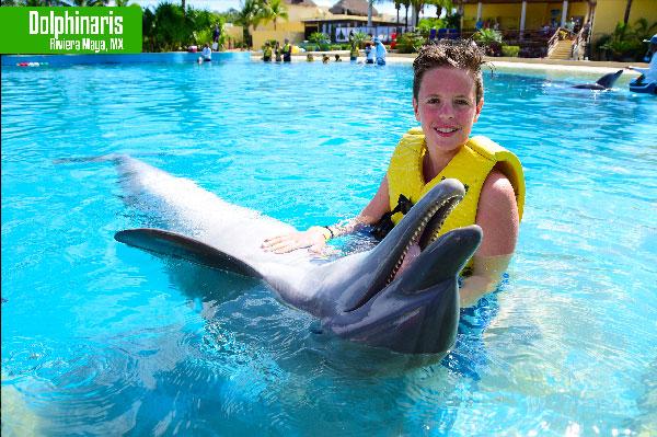 que ver en la riviera maya Dolphinaris