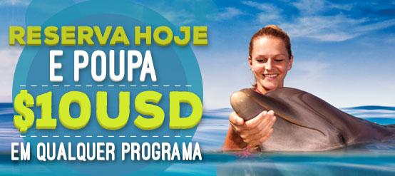 Reserva hoje e poupa $10USD em qualquer programa de nado com golfinhos