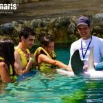¡Vive la experiencia de ser un entrenador de delfines en Dolphinaris Cozumel!