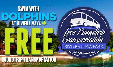 Spring Break Deal: Swim with dolphins in Riviera Maya plus FREE round trip transportation.