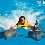 Swimming with dolphins, Dorsal Ride activity.