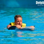 The best dolphin experience is at Dolphinaris.