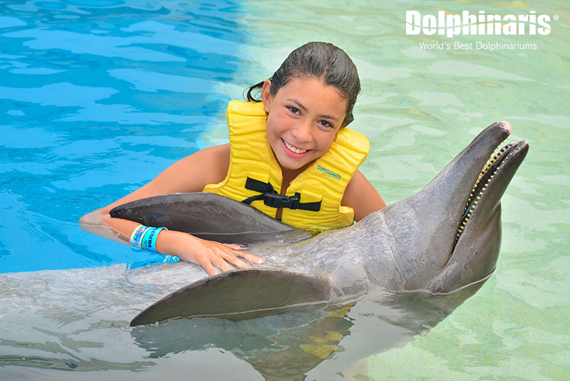 Wonderful encounter with dolphins at Dolphinaris.