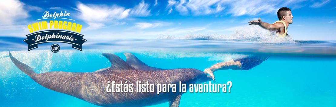 Nado con Delfines - Programa de nado con delfines