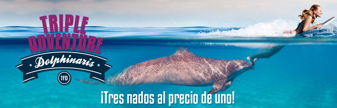 Triple aventura con delfines cerca de Playa del Carmen en Dolphinaris Riviera Maya Park