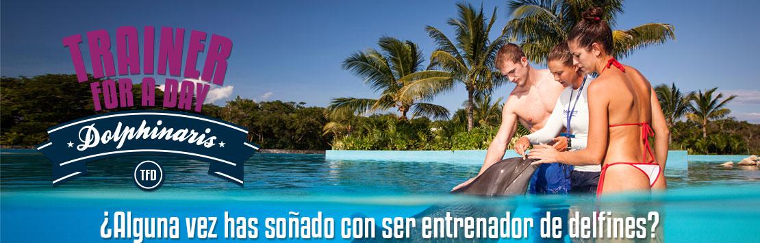 Entrenador de delfines por un día en Cancun, Riviera Maya, Barceló y Tulum.