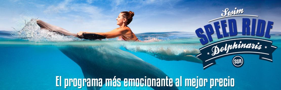 El Programa de nado con delfines mas emocionante al mejor precio en Riviera Maya.