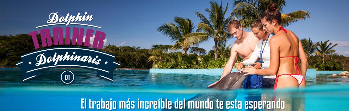 Programa de entrenador de delfines en Cozumel