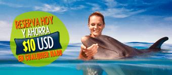 Ahorra 10USD en tu nado con delfines - Reserva hoy!