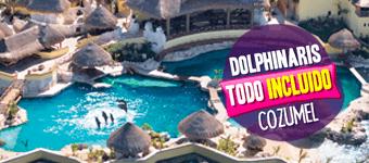 Nado con delfines - Todo Incluido en Cozumel