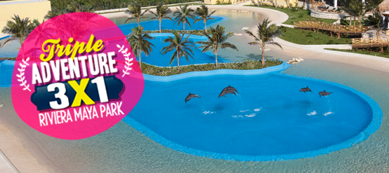Dolphin Swim Deals - Triple Adventure Riviera Maya