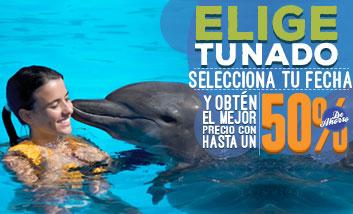Nada con delfines en Dolphinaris: Reserva con anticipación y ahorra hasta un 50%