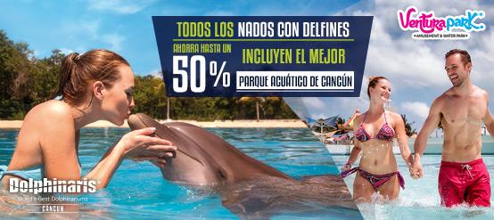 todos-nados-con-delfines-incluyen-mejor-parque-acuatico-wet-n-wild-cancun