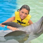 Encuentro maravilloso con delfines