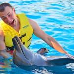 Interagir com golfinhos