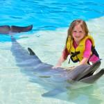 Mágica interacción con delfines