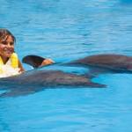 Nado com golfinhos, carona dorsal