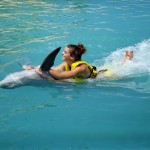 Passeio com golfinhos